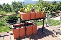This Aug. 2010 photo provided by The Aquaponic Source Inc. shows, an AquaUrban Sleek Aquaponics System on the deck of a private home in Boulder, Colo., that is attractive, easy to assemble and designed to take a second growing bed. Nearly all fresh fish that thrive in captivity can be used for aquaponic gardening. Along with fertilizing your plants, the fish can be used for food or for fun. (AP Photo/The Aquaponic Source Inc.)