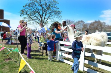 """A petting zoo was part of the """"Pottstown Celebrates Young Children"""" event sponsered by Pottstown PEAK at Pottstown High School.........Photo/Tom Kelly III"""