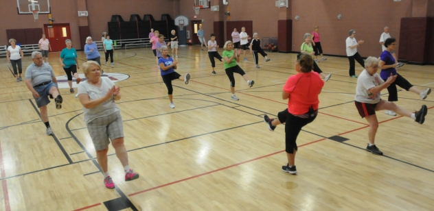 John Strickler - The Mercury The Spring Valley YMCA held a senior health and fitness day Wednesday May 27, 2015. Pictured here seniors participate in the popular  Fit and 50 program.
