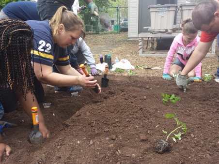 Michilea Patterson - The Mercury. Community members plant seeds at the Pottstown garden on Chestnut Street.