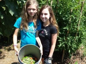 Michilea Patterson — The Mercury. Erin, left, and Sabrina, right, pose with a bucket of peppers and green beans that were harvested from their church garden in East Coventry. The fresh vegetables were bagged for donations to a local shelter and food pantry.