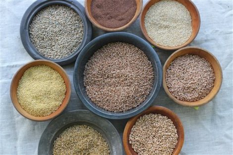 This July 20, 2015 photo shows whole grains, from top clockwise, teff, quinoa, farro triticale, freekeh, millet, rye berries and wheat berries, center, in Concord, NH. Whole grains are gaining ground as more Americans look beyond brown rice. (AP Photo/Matthew Mead)