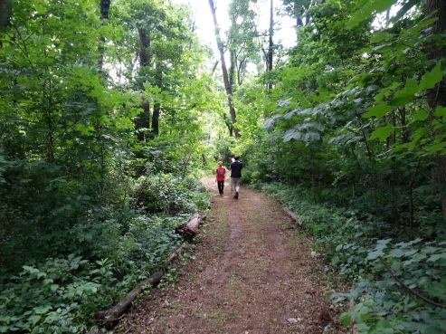 People walk along one of the trails at Althouse Arboretum in Upper Pottsgrove. Submitted Photo