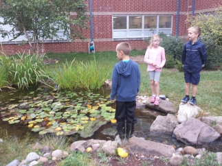 Upper Providence Elementary School students look over the school pond. The pond and a school garden are used in classroom lessons on a regular basis.