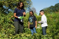 First lady Michelle Obama, joined by school children from Washington area, jokes that she needs to put on gloves to protect her manicure during a harvest of the White House Kitchen Garden, Tuesday, Oct. 6, 2015, at the White House in Washington. Students from four District of Columbia schools helped the first lady with Tuesday's fall harvest. Afterward, some of the produce went into a chicken vegetable salad they ate for lunch.  (AP Photo/Andrew Harnik)