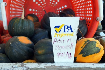 Photo by Emily Ryan Acorn squash is just one variety available at Sugartown Strawberries.