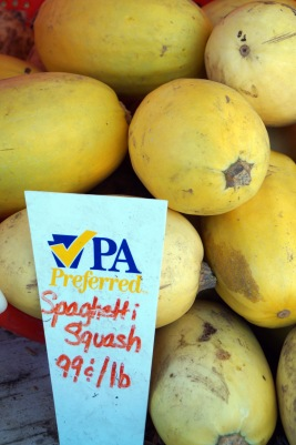 Photo by Emily Ryan The stringy flesh of spaghetti squash resembles its namesake.