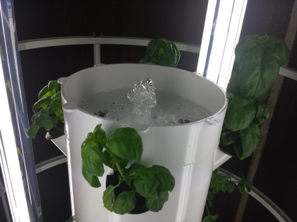 indoor tower garden. The Indoor Tower Garden Uses Water, Air And No Soil To Grow Vegetables Fruits.